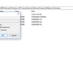Manual option in registry