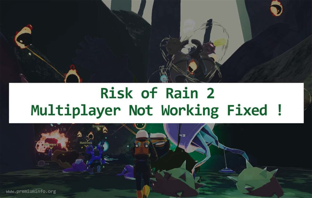 risk of rain 2 multiplayer not working pc xbox ps4